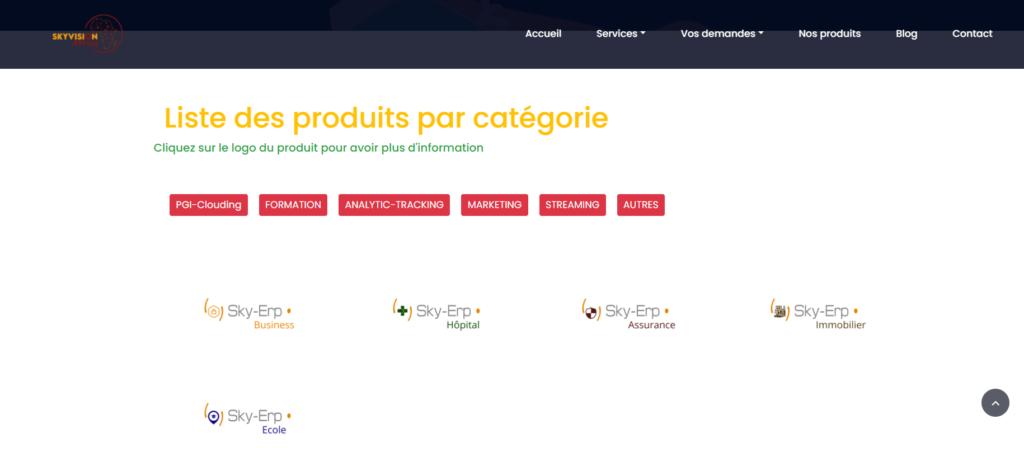 SkyAfrica startup digitalise